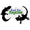 Royal-City-Reptiles's Avatar
