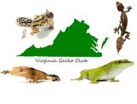 A group for residents of Virginia to get together and socialize with their neighbors